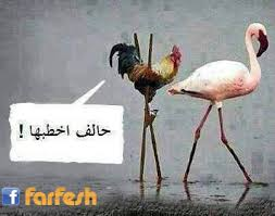 هههههههههههههههههه images?q=tbn:ANd9GcQ