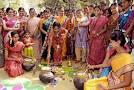 pongal festival এর চিত্র ফলাফল