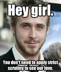 Hey girl. You don't need to apply strict scrutiny to see our love ... via Relatably.com