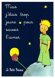 images about ༺ღ the little prince ღ༻ on pinterest   the     c d  e c d f ac f daa   jpg