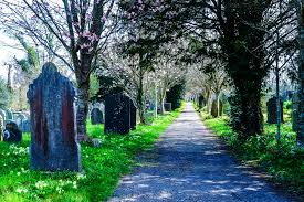 on the trail of sherlock holmes in dartmoor mallory on travel a devon graveyard where the lore of sir arthur conan doyle s the hound of the