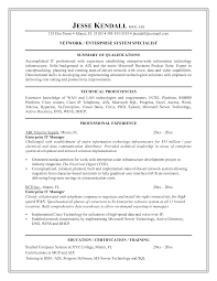 resume  it director resume examples  chaoszmanager resume sample it for