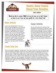 blog paradise animal hospital veterinarian articles blog