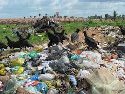 Resultado de imagem para lixoes