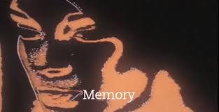 video elements of the essay film   fandor