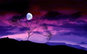 Image result for moon images free download