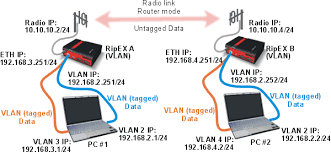 ripex      arp proxy  amp  vlan   racom  management vlan diagram