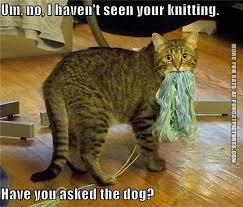 Bildresultat för knitting ladies funny