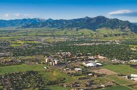 top affordable online master s degree in healthcare montana state university online masters in healthcare administration