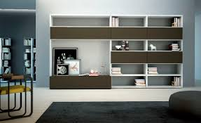 Living Room With Bookcase Bookcase Cabinets Living Room Living Room Ideas