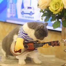 Cat <b>Clothes Costume</b> T-shirt Guitar Rock Singer <b>Cosplay Pets</b> ...
