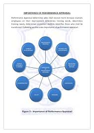 Literature review on evaluation of performance appraisal system happytom co