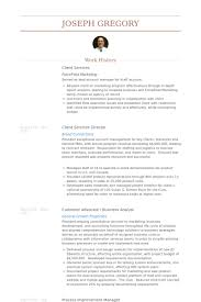 resume writer seattle wa  ceo sample resume ceo resume writing     isohhh ipnodns ru professional resume writing service for entry mid and senior level professionals tn pa co mn kyma
