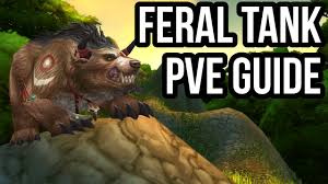 Quick Feral Tank Druid PvE Guide (2.4.3) [WoW TBC] - YouTube