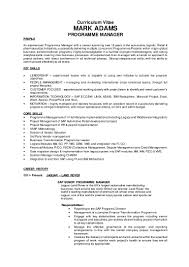 mark adams cv programme manager c