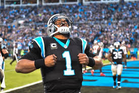 Image result for Panthers picture