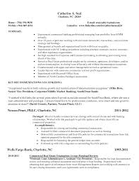 custom broker resume sample resume samples writing guides custom broker resume sample more resume samples best sample resume broker resume template real estate resume