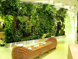 living wall middot