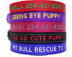 <b>Personalized dog collar</b>   Etsy