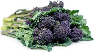 <b>Purple Broccoli</b> Information, Recipes and Facts