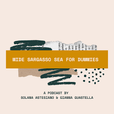 'Wide Sargasso Sea for dummies' a Podcast by Solana Astesiano and Gianna Guastella