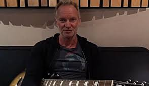 <b>Sting</b> | Splash