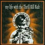 Somebody New by My Life with the Thrill Kill Kult