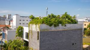 Vo Trong Nghia plants fruit <b>trees on the</b> roof of Thang House in ...