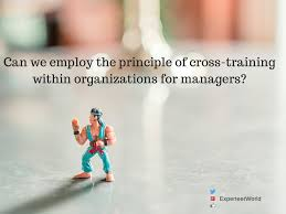 management skills cross training at work to build your cross training for building your work strengths