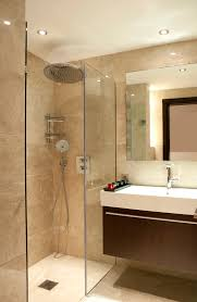 plain ideas small ensuite bathroom