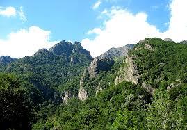 Parcul Național Cozia - Wikipedia