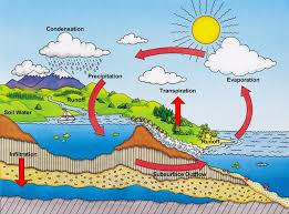 diagram for water cycle  wwwjebasus water cycle and catchment connection cool australia water cycle and catchment connection cool australia