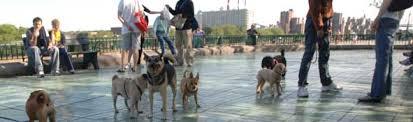 <b>Dog</b>-<b>friendly</b> Areas : NYC Parks