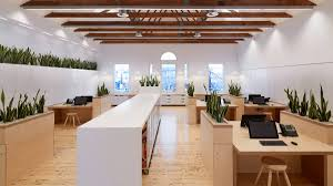 the open plan office features an abundance of natural materials photo peter clarke award winning office design