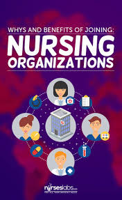 top 25 ideas about professional nurse professional let s take a look at some of the advantages of joining a professional nursing organization