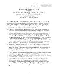 memorandum of understanding template label cover letter memorandum of understanding template label memorandum of understanding sample template memorandum of understanding template 103002 pdf