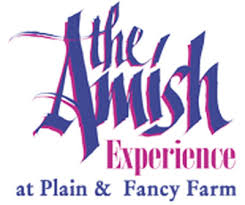 Image result for plain amish