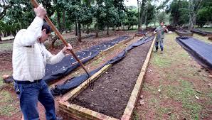 Resultado de imagen para lombricultura