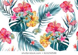 <b>Fashion Flower</b> Images, Stock Photos & Vectors | Shutterstock