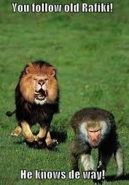 Lion King Funny on Pinterest | Funny Disney Princesses, Lion King ... via Relatably.com
