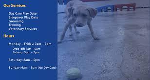 <b>Love My</b> Doggy Day Care