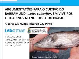 Resultado de imagem para IMAGENS DE RECEITAS DE CARANHA