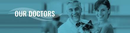 board certified veterinary surgeons fcvs veterinary surgeons
