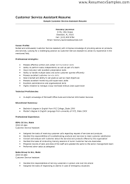 excellent customer service skills resume sample recentresumes com customer service skills resume examples customer service resume skills examples of good customer service situations