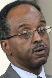 Somali Foreign Minister Muhammad Abdullahi Omaar denied there is a clearly-defined and clear Egyptian initiative . - 2020