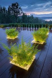 plant linear lighting outdoor plant feature led strip lighting greenery deck blog 3 deck accent lighting