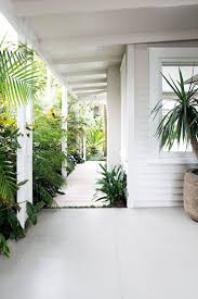 home white potted plants