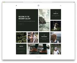 40 best personal portfolio wordpress themes 2017 colorlib vigor classic looking portfolio theme