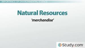 ap environmental science homework help resource course online what is environmental science definition and scope of the field