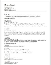 the candidate to credit manager position in this shows achievements for resume examples
